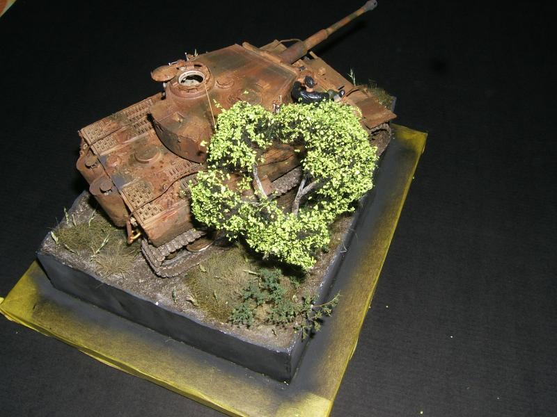 Tigre 1 late [Dragon 1/35] - Page 4 Photo-260-fcdb09
