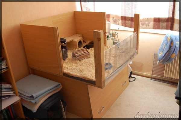 passionnement furets forum furet vison mustelides afficher le sujet cage fait maison. Black Bedroom Furniture Sets. Home Design Ideas