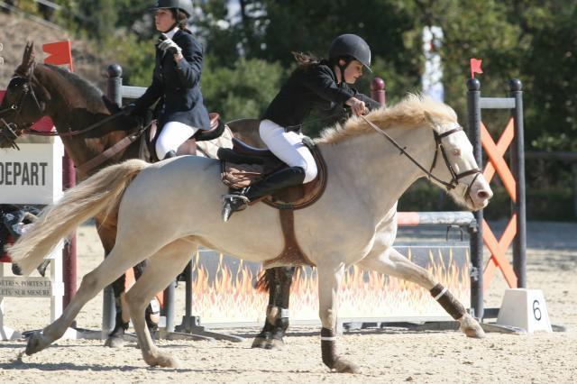 L'homme n'aura jamais la perfection du cheval. Chocolatblanc8-10edc47
