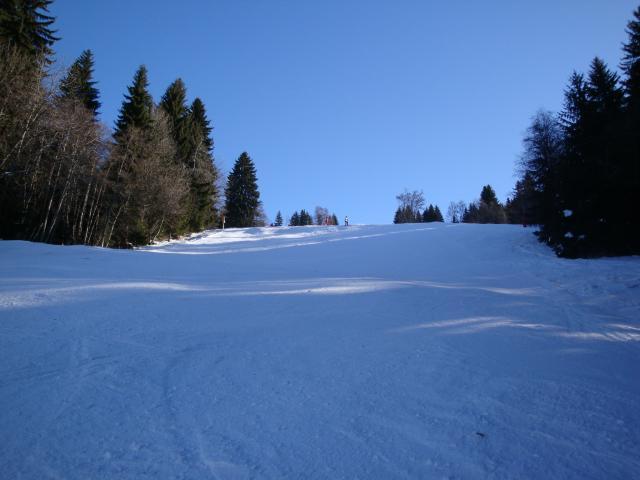 Grand bois; Megève Mont d'arbois Dsc00574-96078a