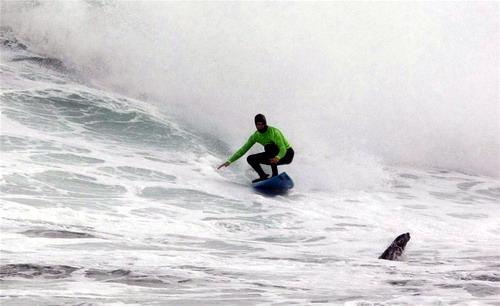 http://img22.xooimage.com/files/9/9/3/surf-extremo-10-10e5ff2.jpg