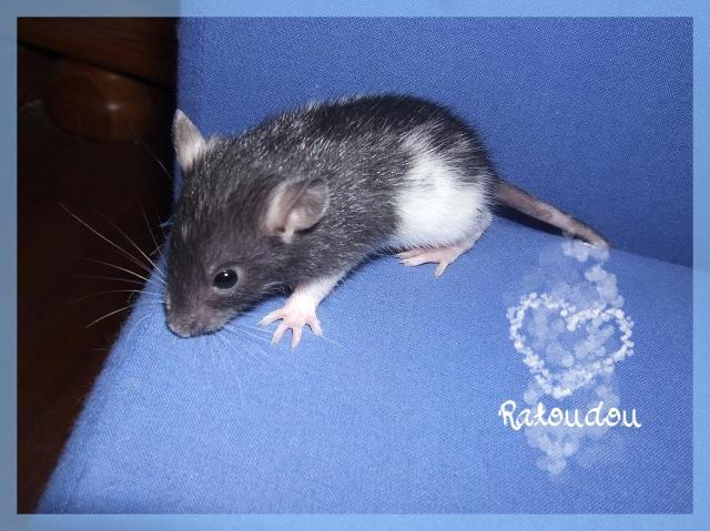 [25] Ma petite Lolita est maman ^^ - Page 2 Dscf5494-107d9af